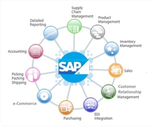 SAP training in Delhi-Teras Consulting