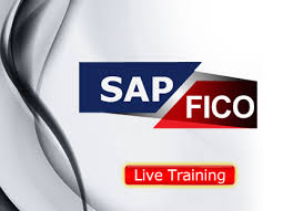 SAP Fico Institute in Delhi