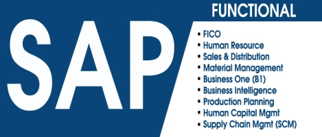 best sap institute in delhi